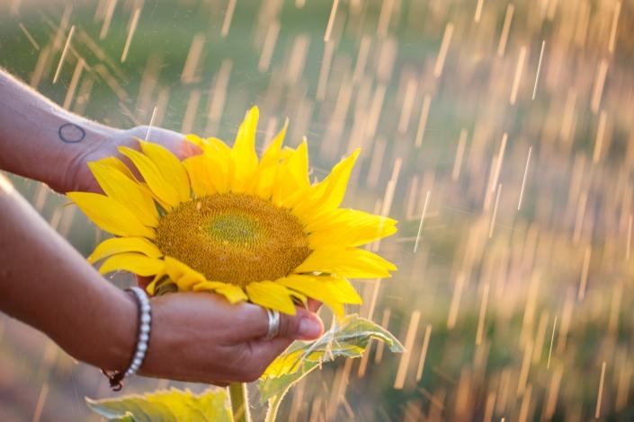 Personality Portrait Outdoor Sonnenblume Regen