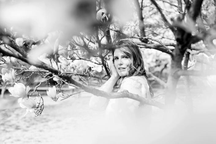 Portrait Natur Frühling Magnolie